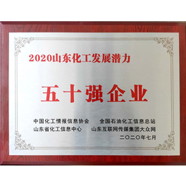 2020年山东化工发展潜力五十强企业